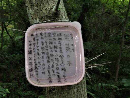 20170604・武蔵村山の秘密基地4-02・大