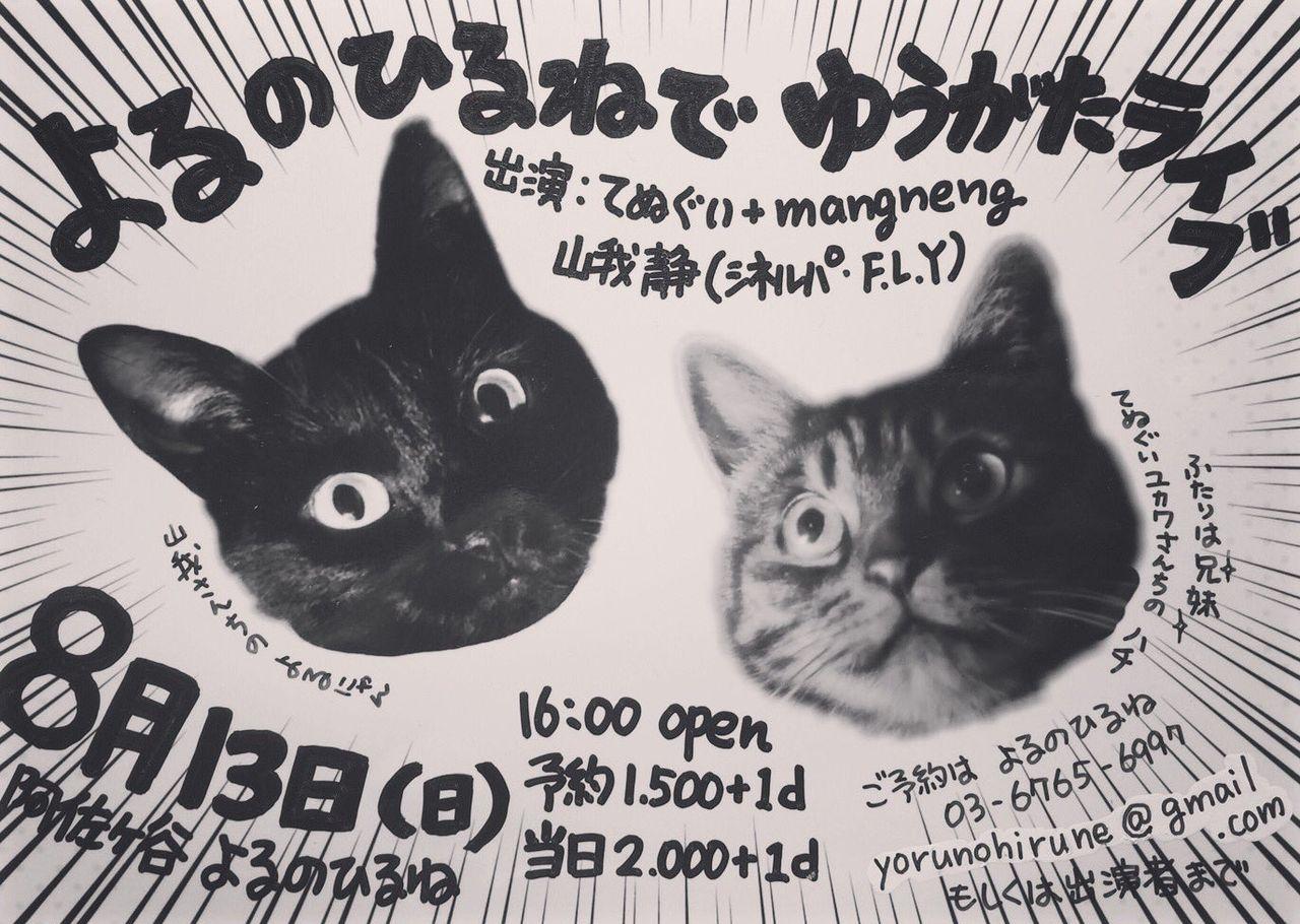 よるひるライブ2017