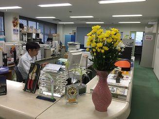 北海道・スプレー菊 015