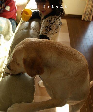 tenkichiのブログ-PC299334