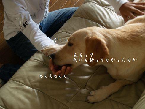 tenkichiのブログ-PA126921