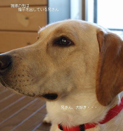 tenkichiのブログ-PB261110