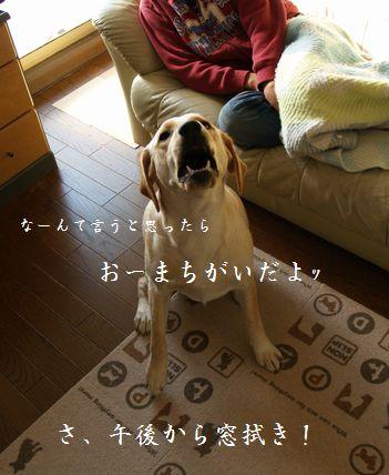 tenkichiのブログ-PC299338