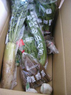 有機野菜のセット