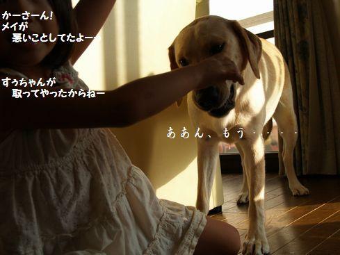 母ちゃんちの晩御飯とどたばた日記-P9066053