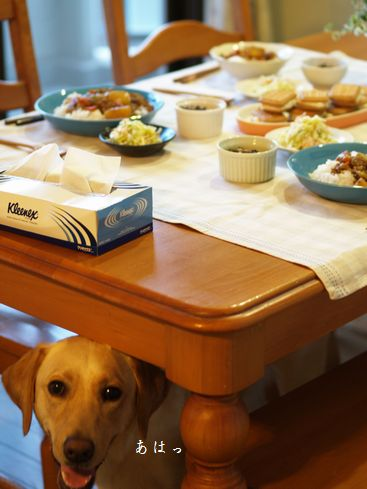 母ちゃんちの晩御飯とどたばた日記-おまけ