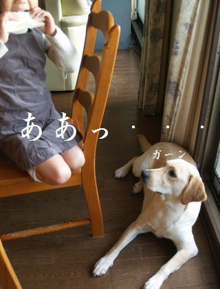 tenkichiのブログ-PC238934