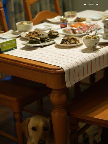 母ちゃんちの晩御飯とどたばた日記-テーブルの下