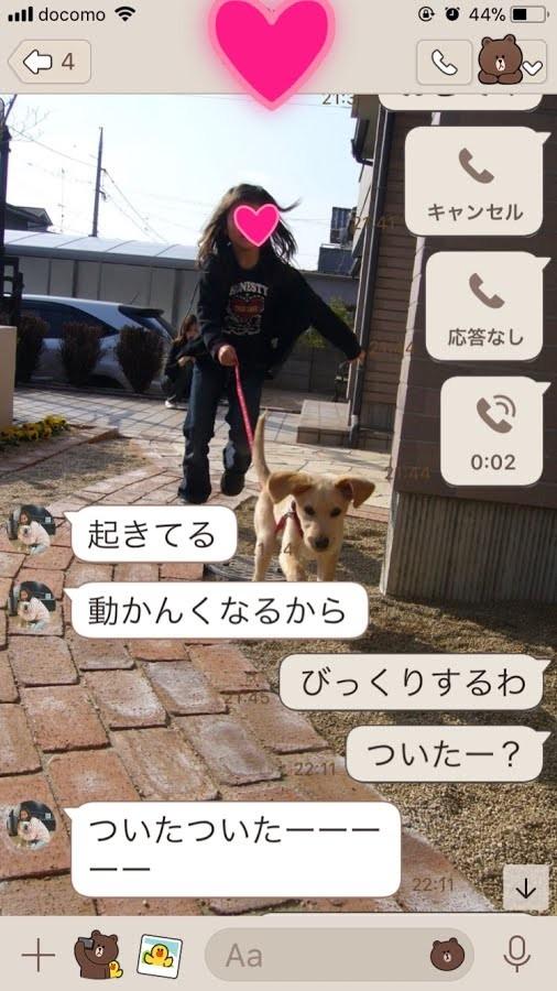 IMG_8455