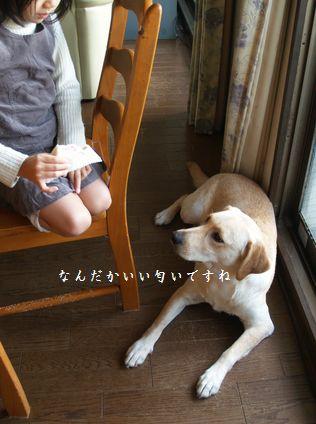 tenkichiのブログ-PC238933