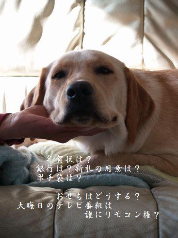 tenkichiのブログ-PC299331