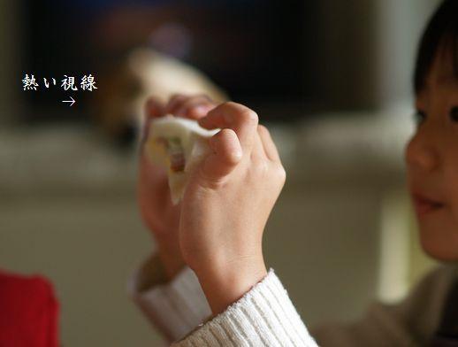 tenkichiのブログ-PC238949