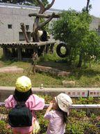 20050523oji.jpg