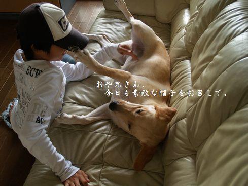 tenkichiのブログ-PA126924