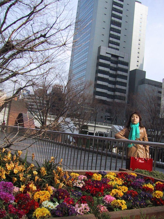 花壇と摩天楼(新宿西口)
