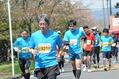 2014さが桜マラソン 40�