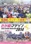 佐賀さくら2014