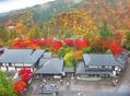 輪王寺からの紅葉