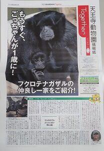 Together表紙
