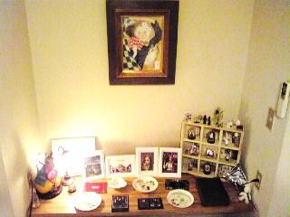 常設展示室「隠し部屋のアリス」北壁面