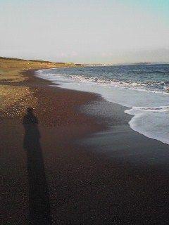 茅ヶ崎の海岸1010021628