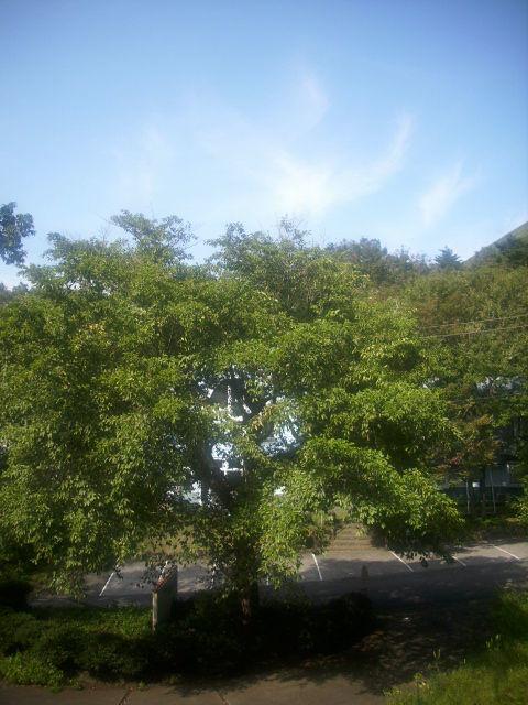 天使雲 2012/10/08 AM