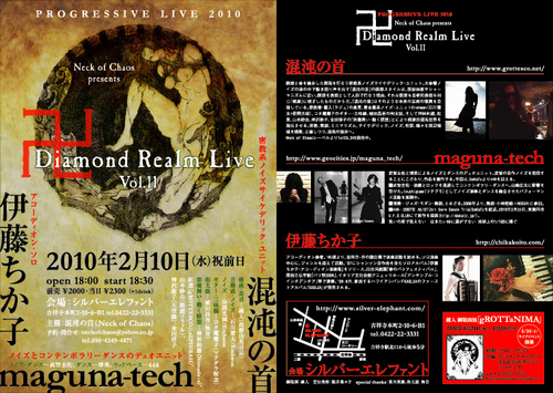 Diamond Realm Live Vol.11