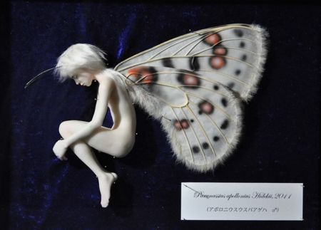 甲秀樹展「蝶と少年の物語」