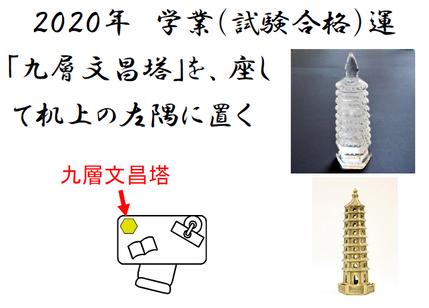2020 19P