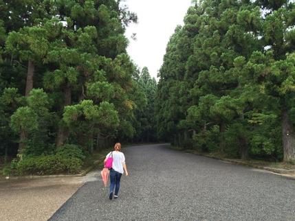陵への参道