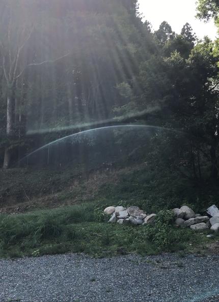 水神様が地中で眠られている涸れ池