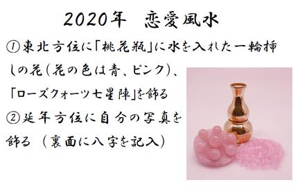 2020 18P