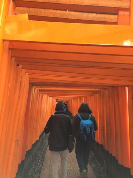 稲荷山登山道の入り口の千本鳥居