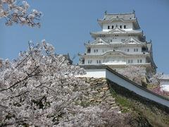 姫路城の満開の桜