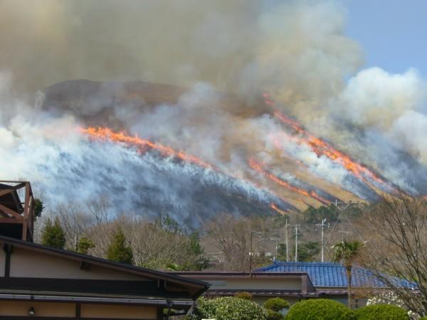大室山の山焼き2010年