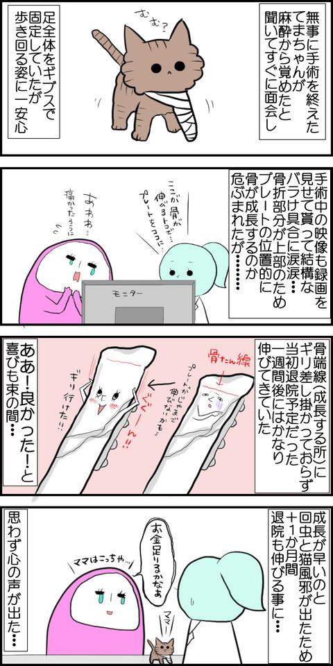 てま手術②