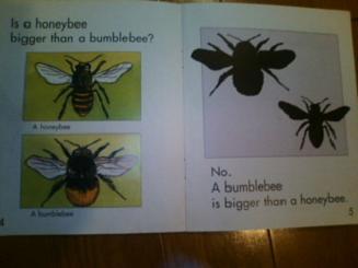 english book