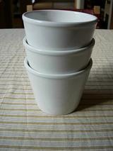 前にイケアで買っておいた白い鉢