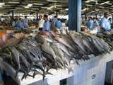 スーク(市場)には意外と日本と共通する魚種が並んでいた