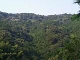 天草中央部の山頂に開設されたあさやけ農場