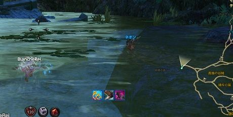 TERA_ScreenShot_20111110_004200