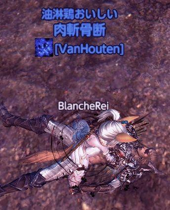 TERA_ScreenShot_20111122_235241