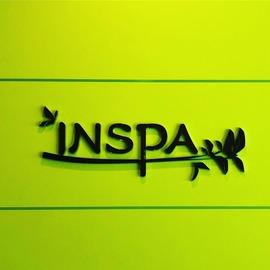 insppp (2)