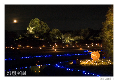 月と幻想庭園2