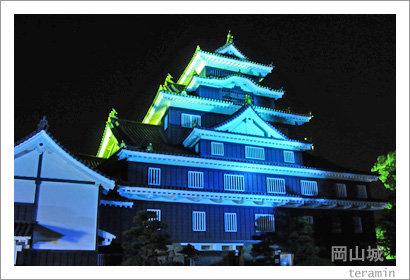 castle111114