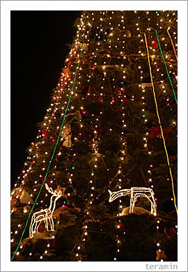 クラレのクリスマスツリー2