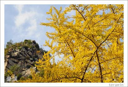 豪渓の紅葉 写真4