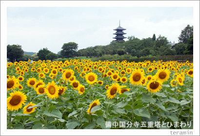 kokubunji120714_1