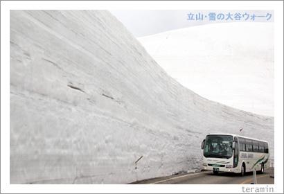 立山・雪の大谷3