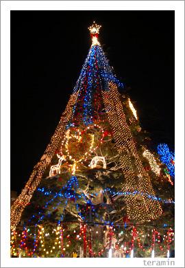 クラレのクリスマスツリー1